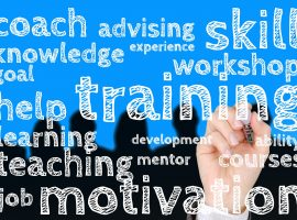 Advising, coach, knowledge, skill, training, mentor, courses